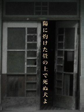 tataminoue.jpg